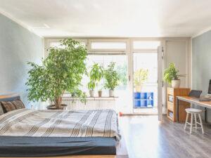 Urbanes Wohnen im charmanten City-Apartment